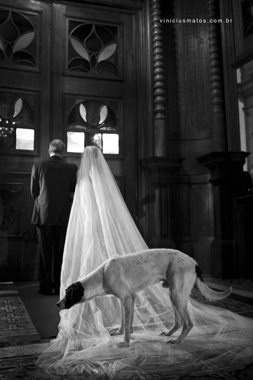 Cerimonia de casamento com um cachorro