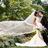 Compondo o look: sugestões de véu para noivas